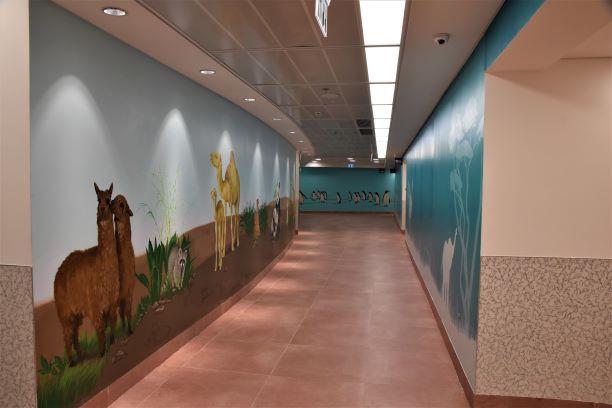 מסדרון עם ציורים - מואר