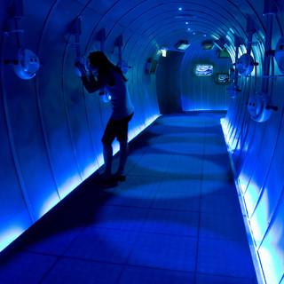 מסדרון - המדמה צינור ענק, המוביל לאולם התצוגה. מואר באור כחול מכיוון הרצפה