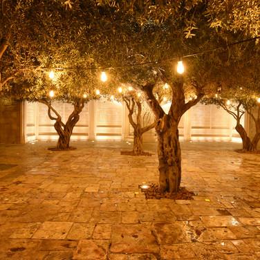 קיר התורמים | עיר דוד | ירושלים