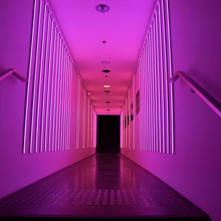 מסדרון של אור בגוון ורוד פוקסיה ואדום