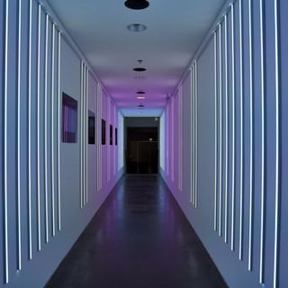 מסדרון של אור - סגלגל-אפור