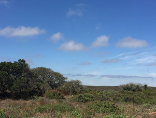 Tour the Former Fort Ord