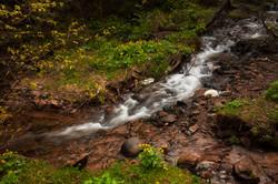 Sturgeon Creek