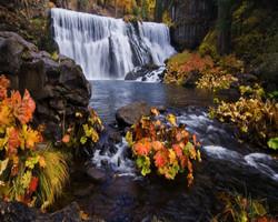McCloud Falls I