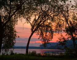 Mississippi River Sunset with Tree