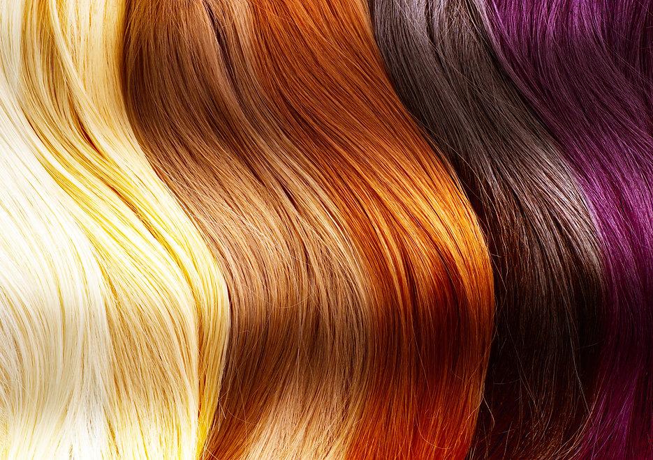 HairColorsPalette.jpg