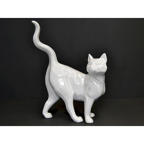 Chat blanc nacré