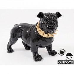 Bulldog CHIC