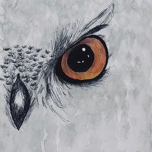 Bird of Darkness