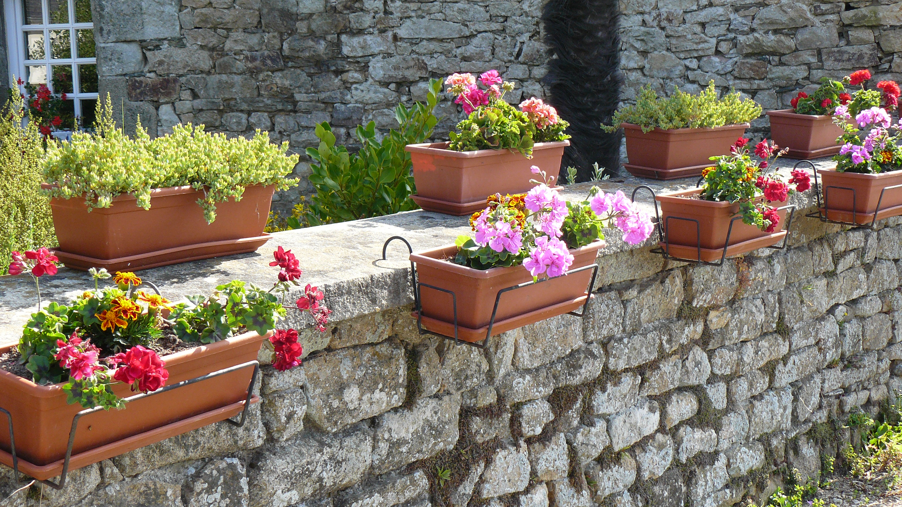 Jardinières_sur_muret.JPG
