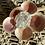 Thumbnail: Moonstone ZenFlower ~ Divine Feminine