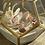 Thumbnail: ZenFlower Terrarium ~ Amplified  P e a c e