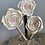 Thumbnail: Heartfelt Roses