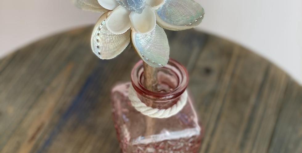 Abalone & Blue Calcite ~ Peaceful