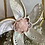Thumbnail: Abalone Terrarium ~ Love