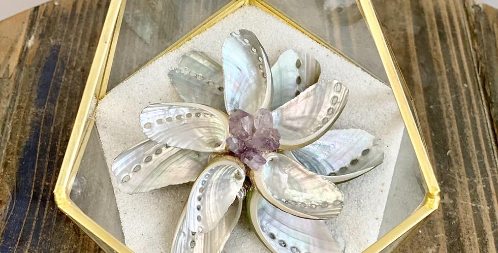 Abalone ZenFlower Terrarium ~ Amethy