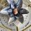 Thumbnail: ZenFlower Terrarium ~ Sunstone
