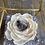 Thumbnail: The Calming Rose