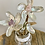 Thumbnail: Abalone Trio in glass vase