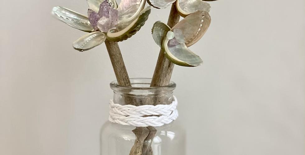 Abalone Trio in glass vase