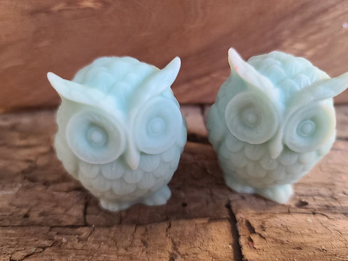 Chill out -  owl shaped wax melt
