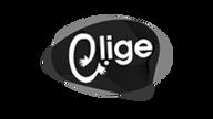 ELIGE2.png