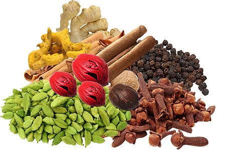 Kerala Spices 1.jpg
