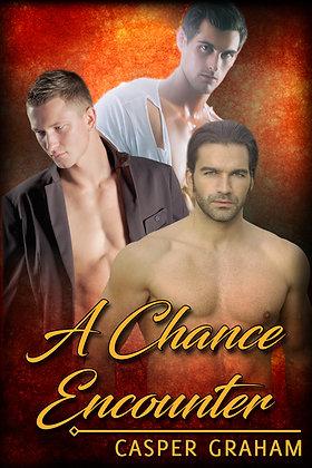 A Chance Encounter by Casper Graham