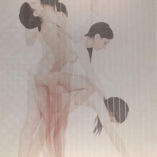il corpo intuitivo  2017  art work Gigi Piana per Daniele Ninnarello