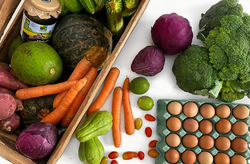 da-mata-salada-delivery-organicos