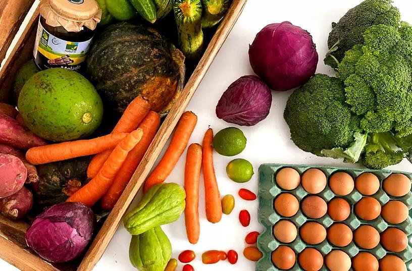 da-mata-salada-delivery-ingredientes.webp