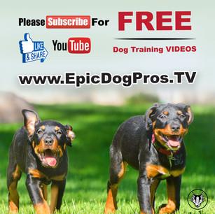 You Tube Promo