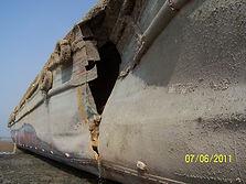 ship insurance