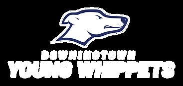 DYW-Logo-full-tall-RGB-4cwhite.png