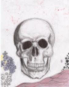 skull-sketch.jpg