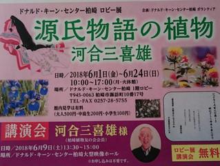 源氏物語の植物 陸上記録会