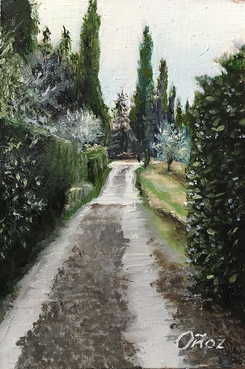 Lane at Villa Le Montanine