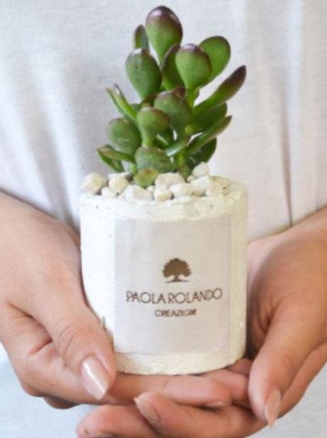 PAOLA ROLANDO CREAZIONI Pianta Grassa linea Flora - Bianco Perla