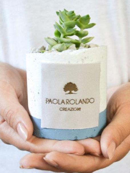 PAOLA ROLANDO CREAZIONI Piantina Grassa linea Flora - Zucchero