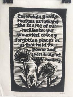 Calendula. Words by Ari of Kamayan Farm
