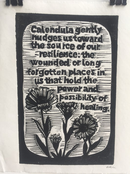 Calendula. Words by Ari of Kamayan Farm