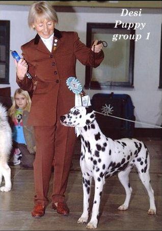 desi-best-puppy-in-group.jpg