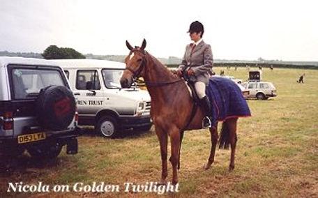 nicola-on-golden-twilight.jpg