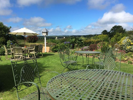 A drink with a view! The Top Ten Pub Gardens on Dartmoor