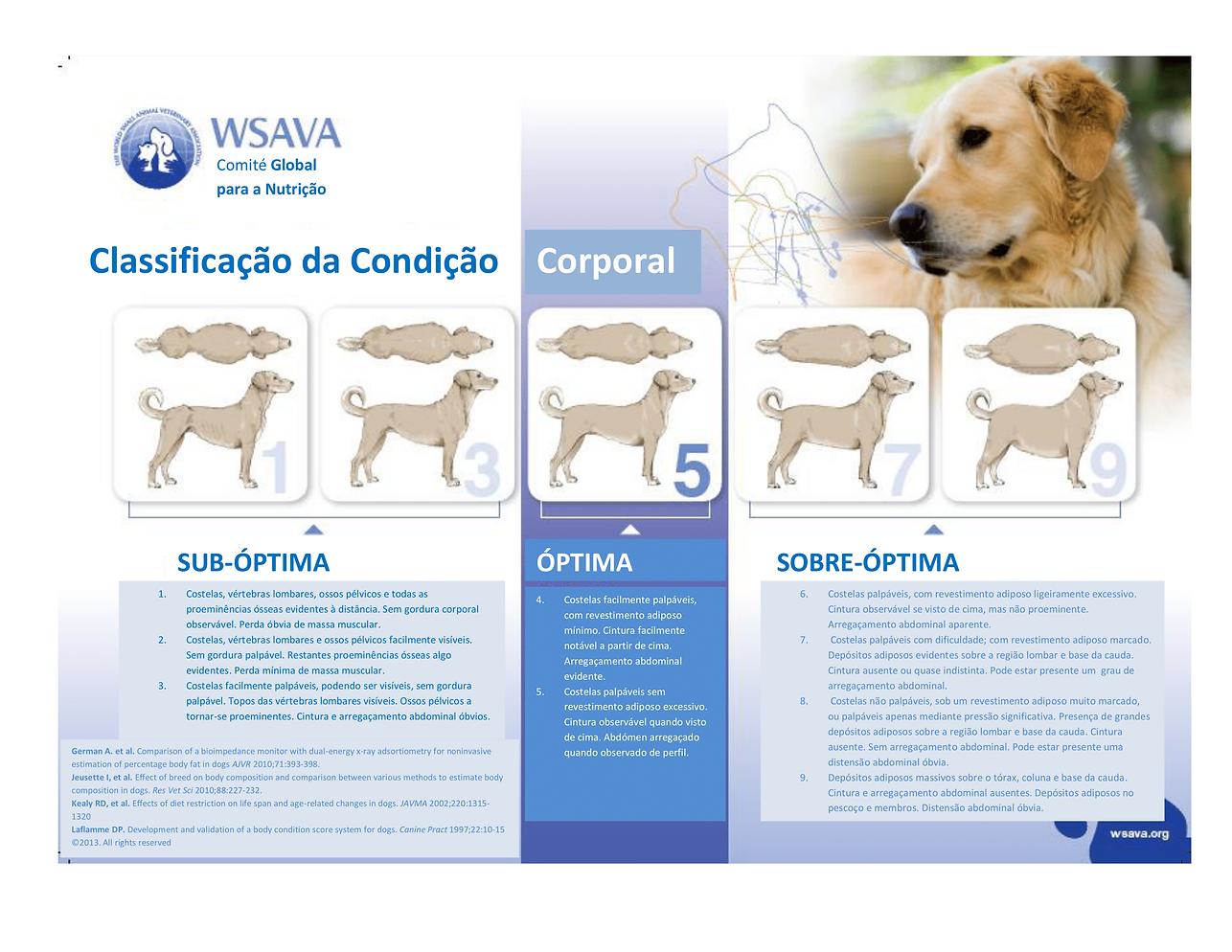 Body-Condition-Score-Dogs-(Portuguese) (
