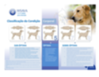 Body-Condition-Score-Dogs-(Portuguese) (