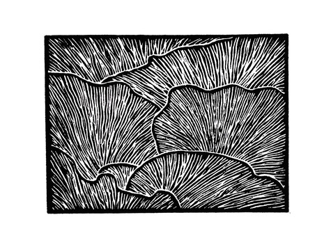 linocut noir