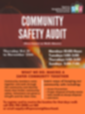 Community Safety audit - FINAL.png