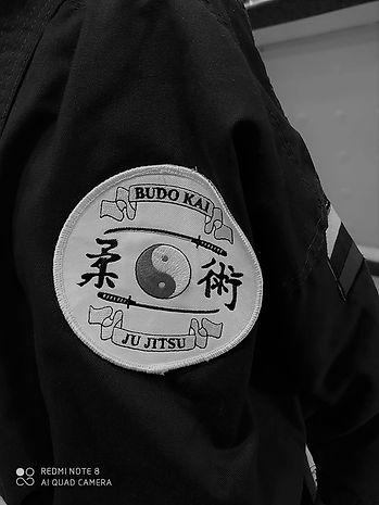Chest Badge.jpeg