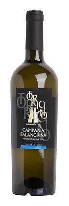 Campania Falanghina IGT 2015